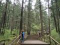 我的九寨沟行之原始深林