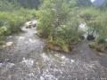 我的九寨沟行之珍珠滩瀑布