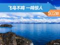 【社区日报】第502期:飞鸟不鸣一鸣惊人