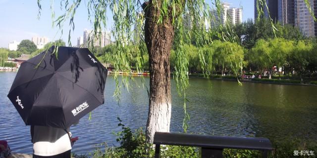 【大米当钱花】爱卡雨伞到,公园看荷花