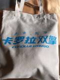 青海湖节油挑战赛