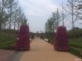 【斯柯达晶锐No.4】郑州龙湖北湿地公园游记
