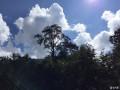 川高雅安喇叭河避暑自驾游