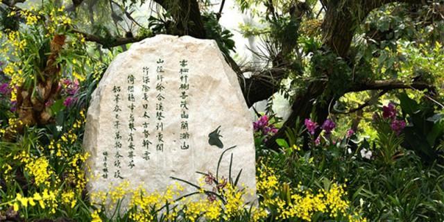 【爱卡15周年】游青秀山兰园