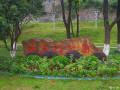 雨中的南京 神策门
