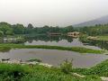 晨游北京植物园