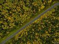 2017贝加尔湖金秋自驾之旅丨探寻即将消失的M55号公路