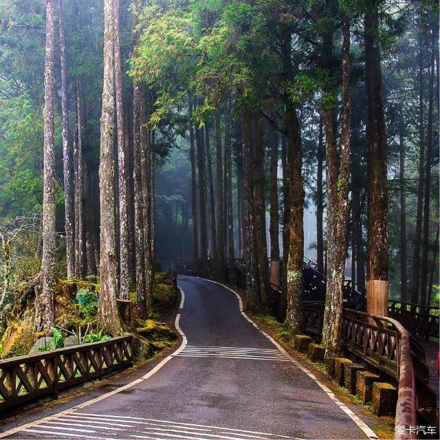 2018台湾环岛游第四天:阿里山风景区,佛光山佛陀
