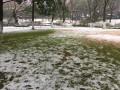 【途观大队】(长篇)杭州美景与十年一遇大雪碰撞出大美杭州城