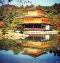 京都的红叶