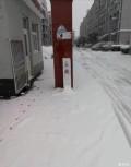 雪下的不正经,报警?