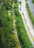 1.69万公里!! 成都建全地球最长绿道,打造世界慢行王国
