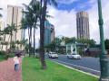 《小米走天涯》第三季――玩转风情夏威夷