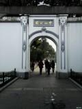中山公园看书画展