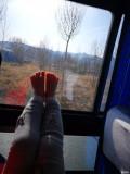 春节之旅-出发塞北草原前有感而发