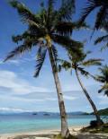 我的菲律宾之旅
