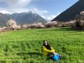 我的西藏波密实时照片