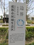 清明节的公园