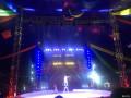 不一样的亲子活动――皇家马戏团,重庆哈弗H2车友群