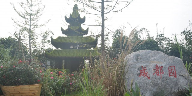【 如 7 而 遇 】美丽的邂逅中国什邡月季展……