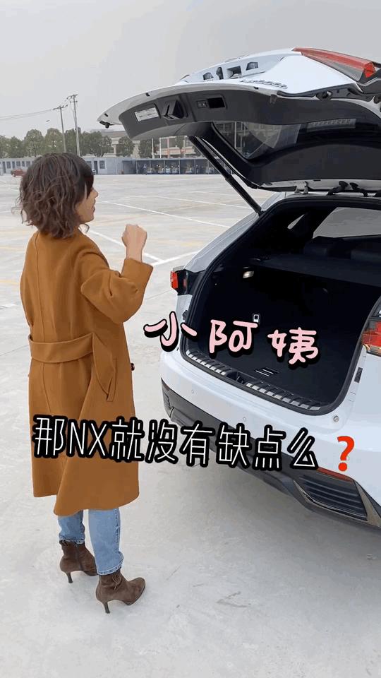 老婆非要雷克萨斯SUV,懂事老公都挑了NX