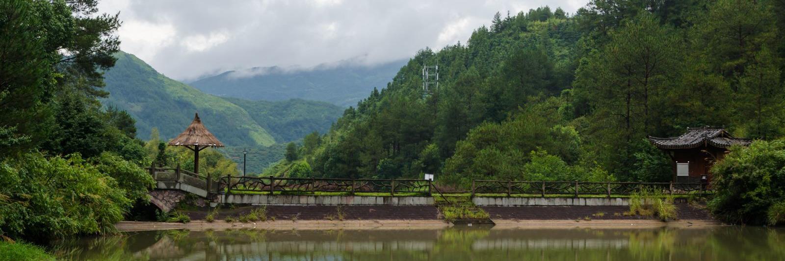 麗水之行,走進美麗的畬族鄉寨,領略云中大漈之壯美