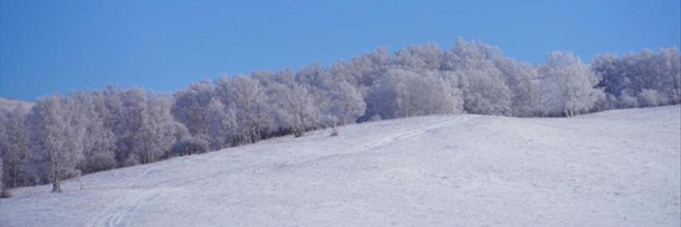 赏乌兰布统冬季之美