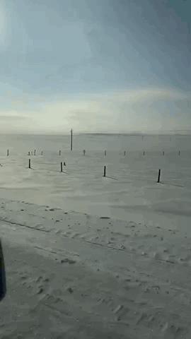 在雪地中急驰