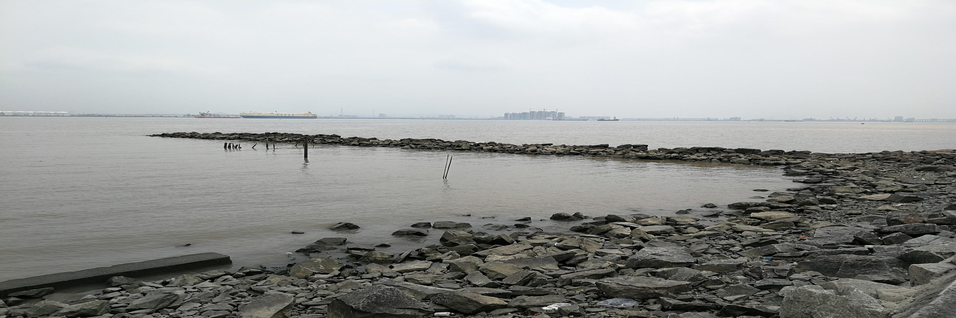 在T60打卡之海鸥岛游记(6)看放风筝,和快乐的人们一起放风