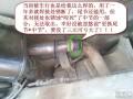 目前解决老赛欧(别欧+老雪欧)排气管问题的最高性价比方案