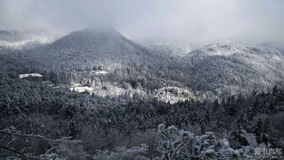 冬天夜晚森林
