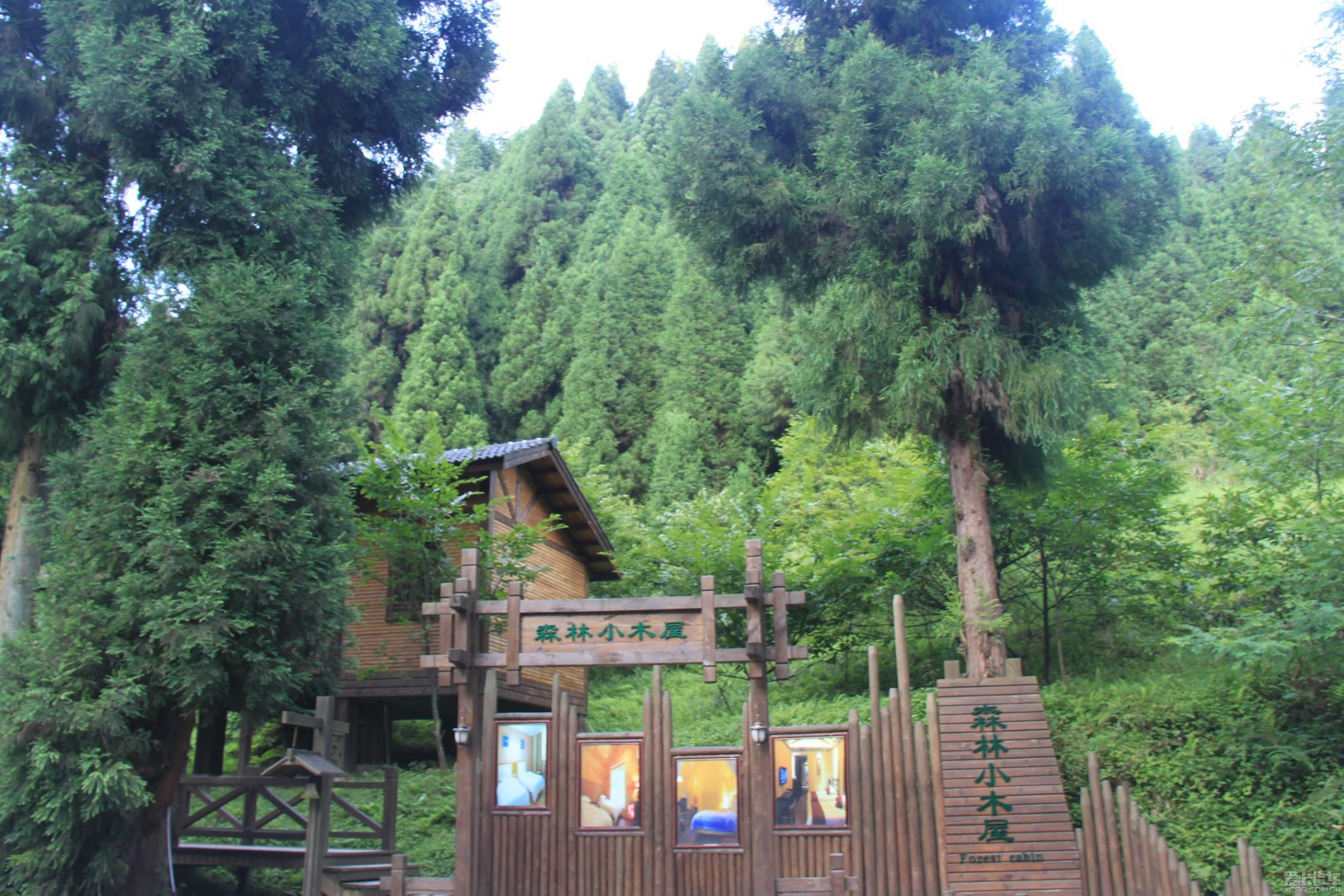 森林小木屋,童话一般的世界!
