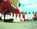 春天到武大看樱花,冬季到文华看红枫!