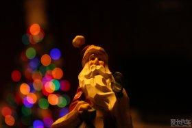 周末鱼块,圣诞看树