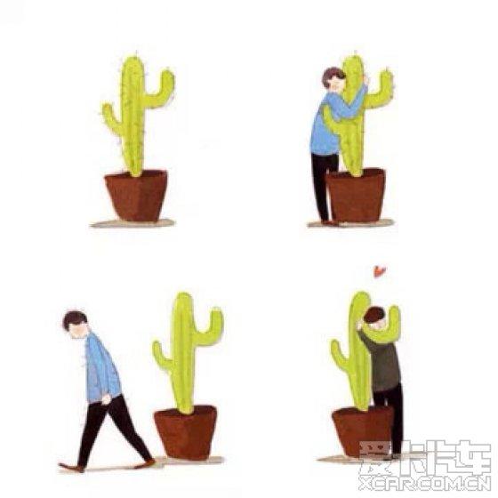 【精华】拥抱仙人掌_恋爱物语