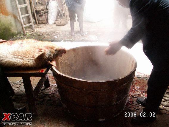 热汤已注入木桶中,看来年猪死了还享受木桶浴呢,不知有小姐给搓背否?