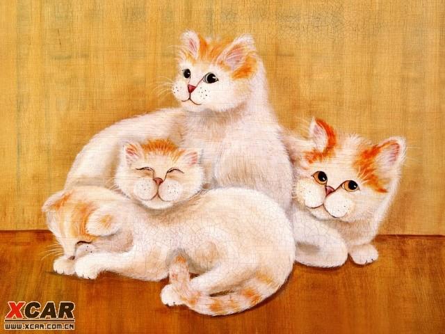 壁纸 动物 猫 猫咪 小猫 桌面 640_480