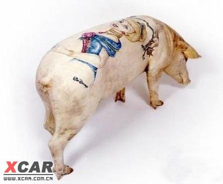 神奇搞笑的纹身猪
