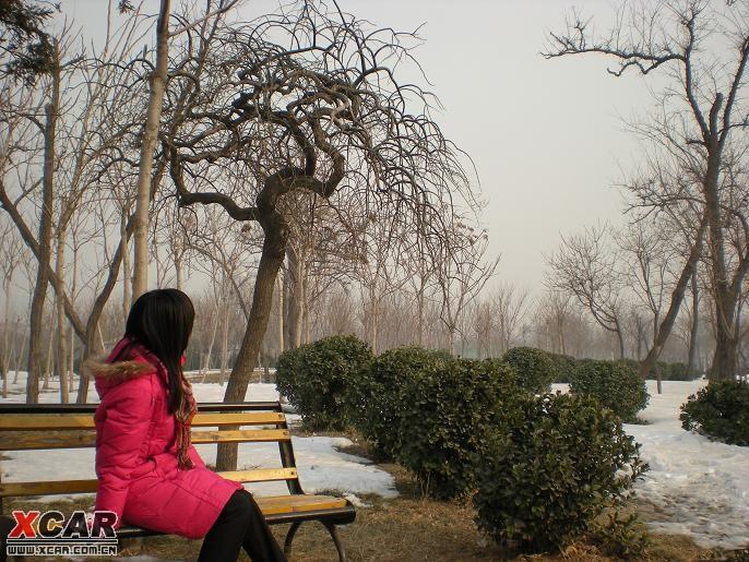 走,塘沽河滨公园滑冰去