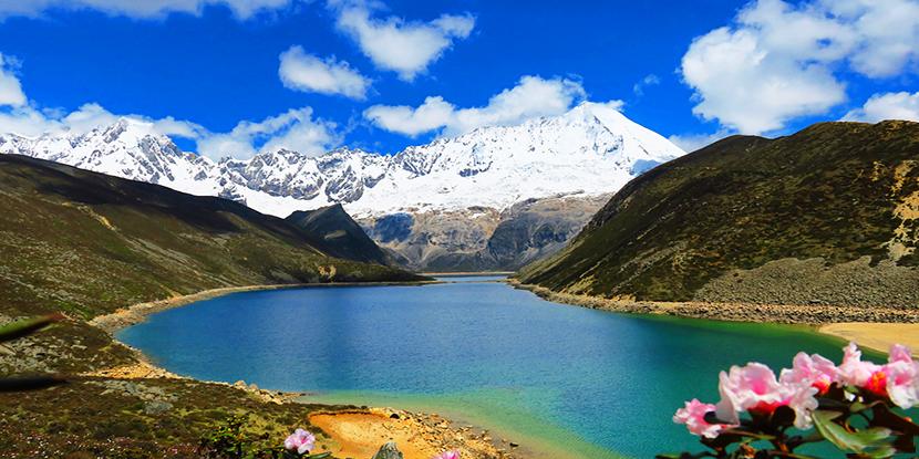洁白高傲 行走于喜马拉雅山脉