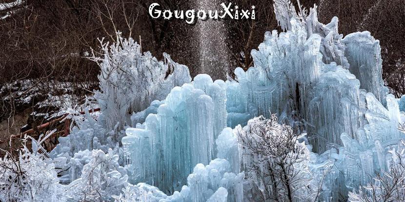 千里冰封万里雪飘——元月北京黑龙潭,吉林松岭雪村冰雪之旅