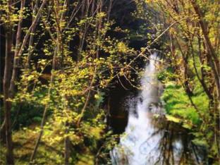 享受周末假期绿肥红瘦春天来袭享受宁静