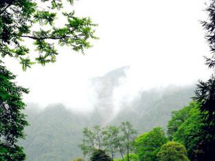 走进四川绿色天堂记录我的游记不可多得