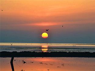 观黑马河日出日落