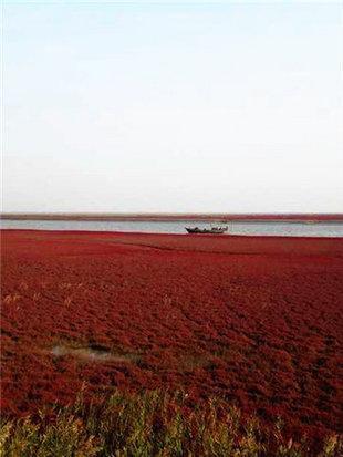 说走就走直达红海滩