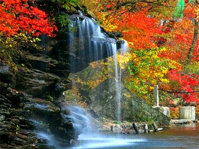 百瀑峡深秋红叶似火
