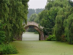 欣赏汉石桥烟雨朦胧