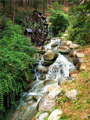 探金龙水寨生态乐园