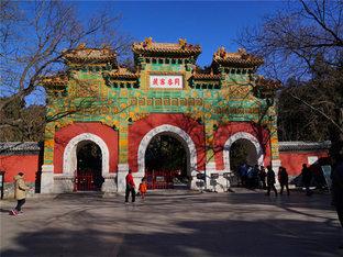 冬日中的另一番景象 京郊卧佛寺行摄记