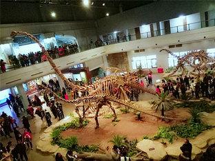 """置身""""侏罗纪"""" 在恐龙博物馆学习知识"""